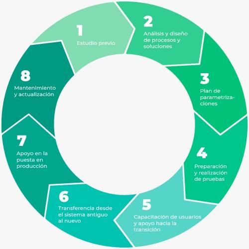 spyro-software-infografia-consultoria